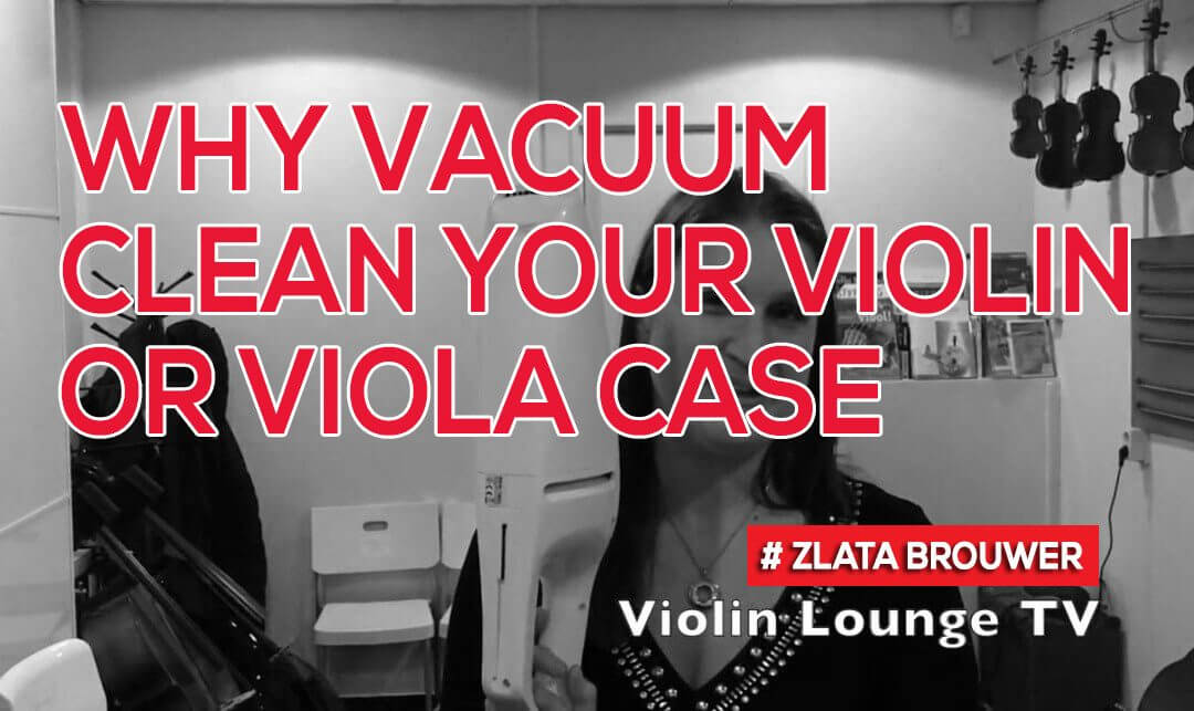 Why Vacuum Clean Your Violin or Viola Case