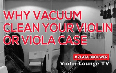 Why Vacuum Clean Your Violin or Viola Case