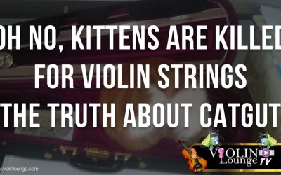 Oh No, Kittens are Killed for Violin Strings! – the Truth about Catgut