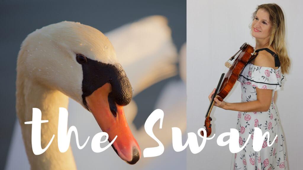 swan saint saens viola piano
