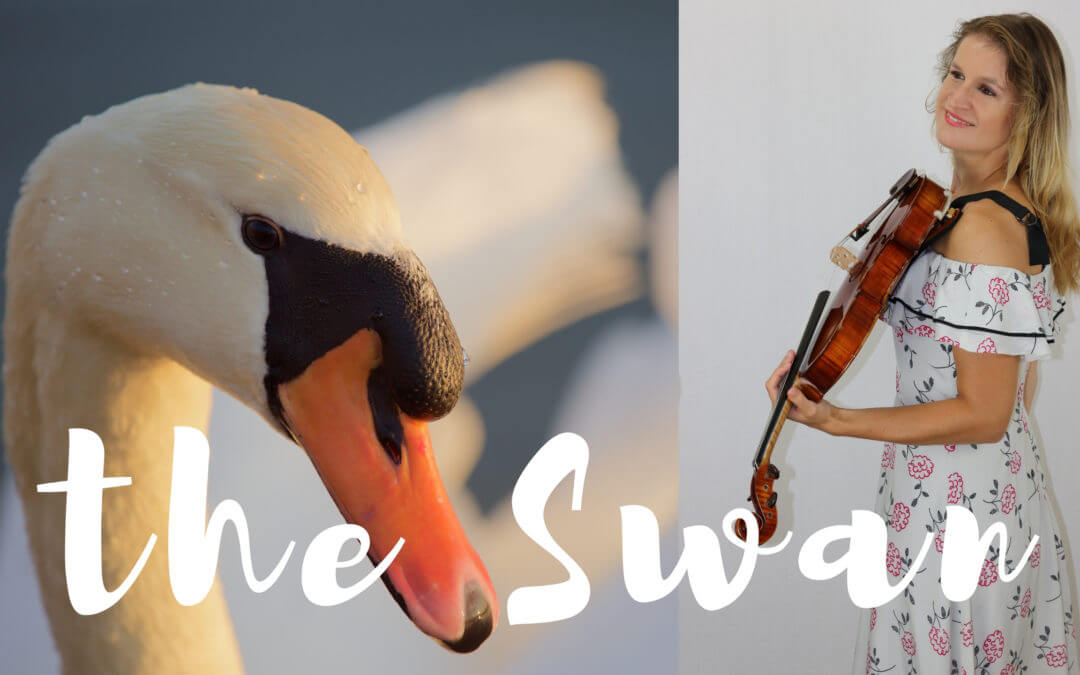 the Swan by Saint-Saëns (viola and piano)