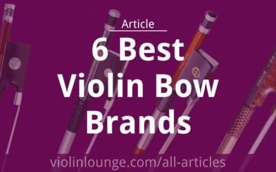 6 Best Violin Bow Brands of 2020